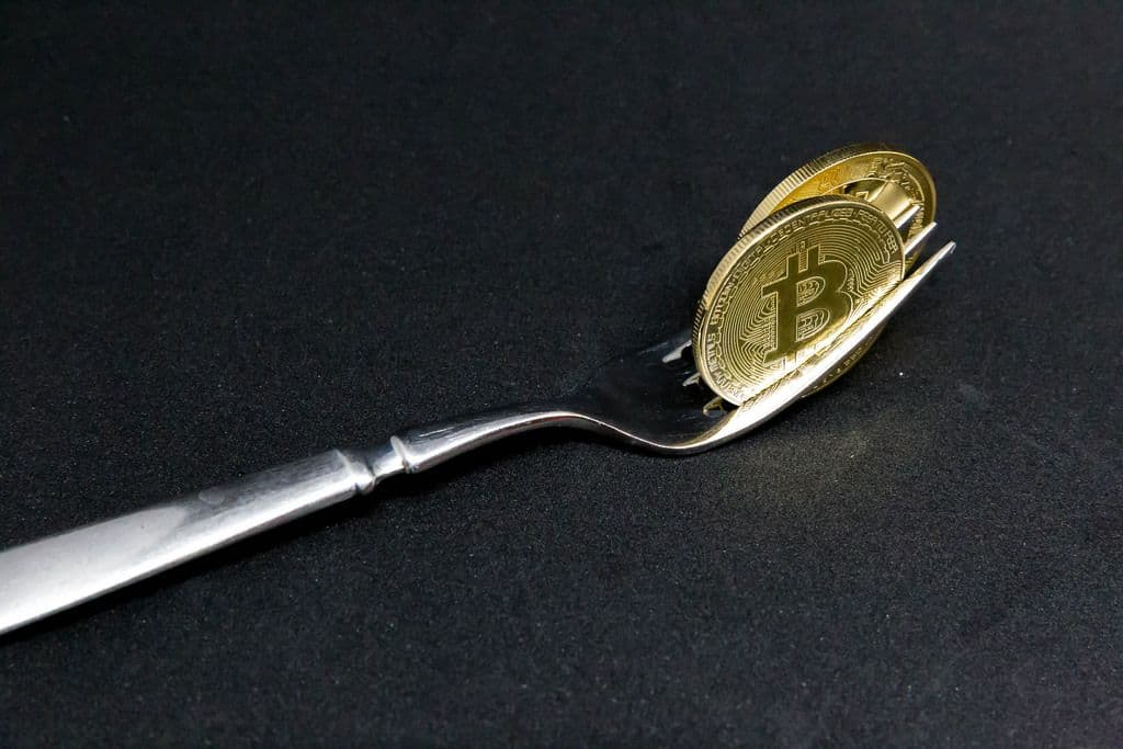 The Bitcoin forks
