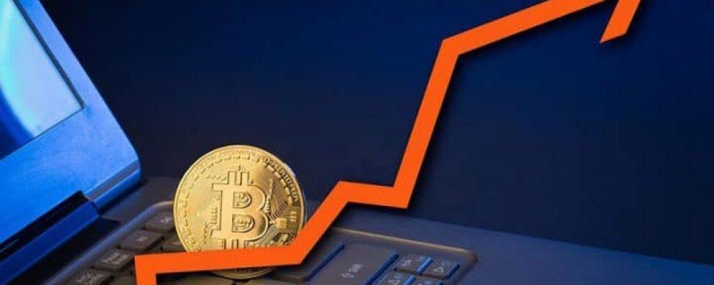 Bitcoin whales accumulate BTC (3)